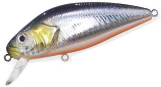 PERCH 760 holo shad