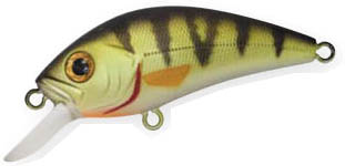 S.HORNET 510 green perch