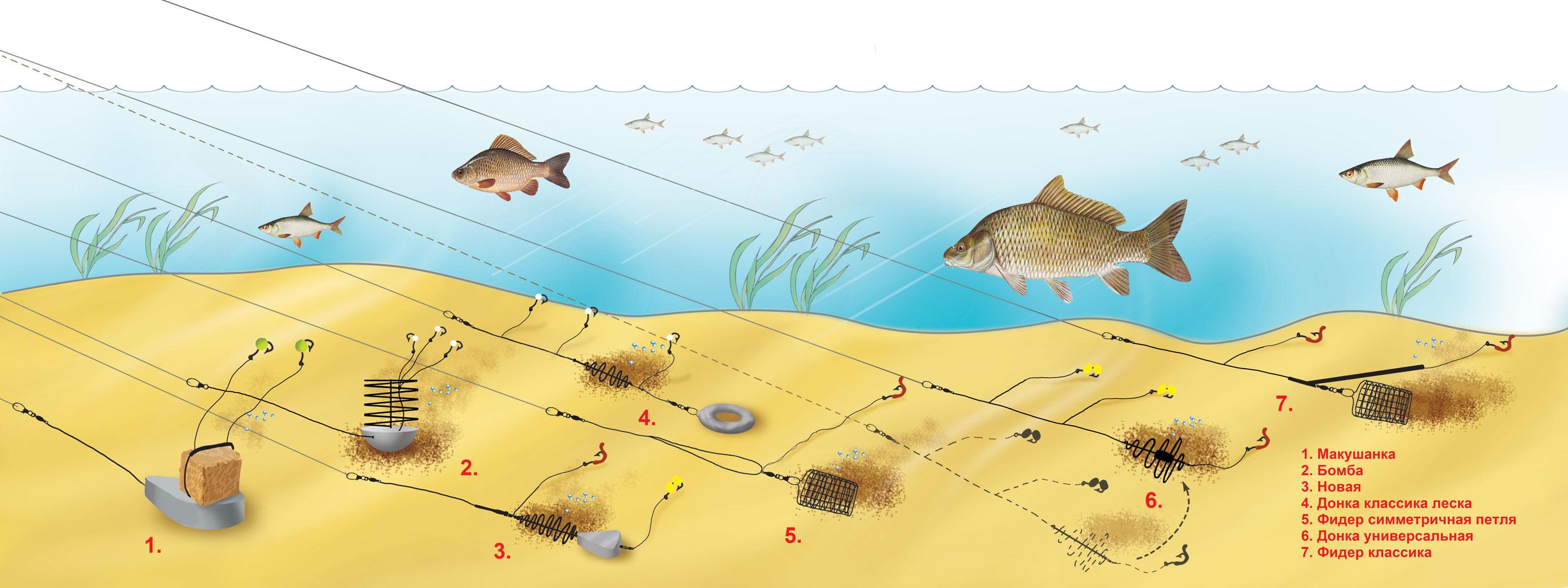 прикормки для рыбалки москве