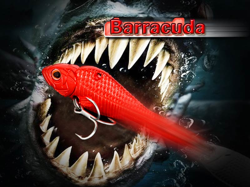 Блесна BARRACUDA