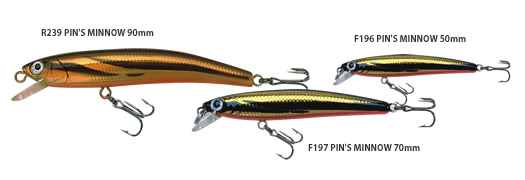 PIN`S MINNOW (F)